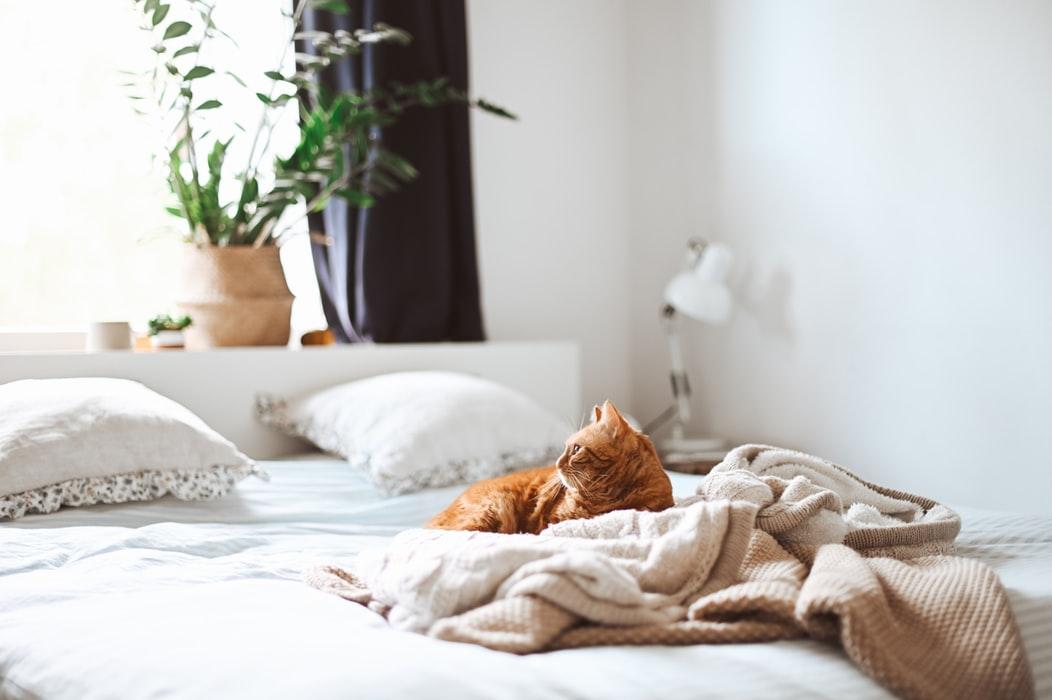 Sypialnia w stylu boho i rustykalnym